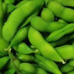 枝豆の保存方法は?茹でたらどれぐらい日持ちする?冷凍はできる?