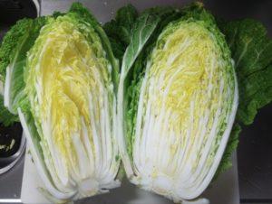 白菜の見分け方 断面
