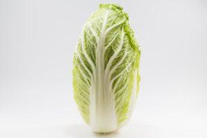 白菜の長持ちする保存方法 立てて保管